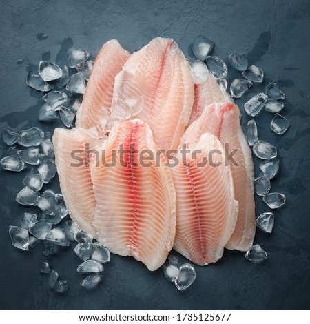 Fresh fish fillet of sea bass in ice on a dark slate background. Top view. Photo stock ©