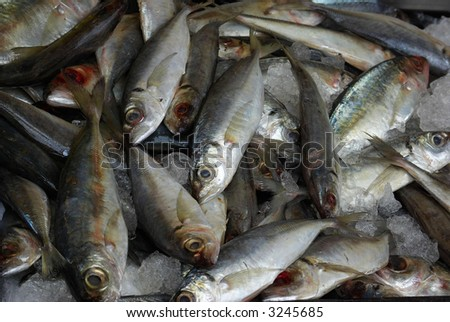 Fresh fish for sale in New York City's Chinatown