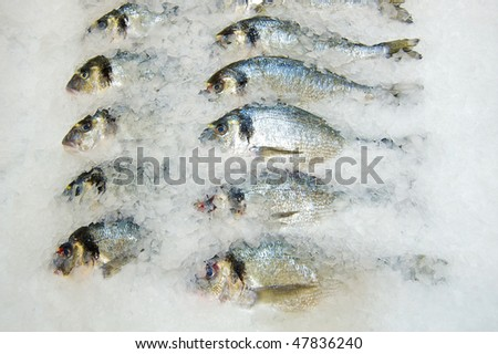 Fresh fish on ice decorated for sale at market