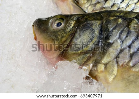 Fresh fish on ice in the market. seafood, non-GMO and chemistry #693407971