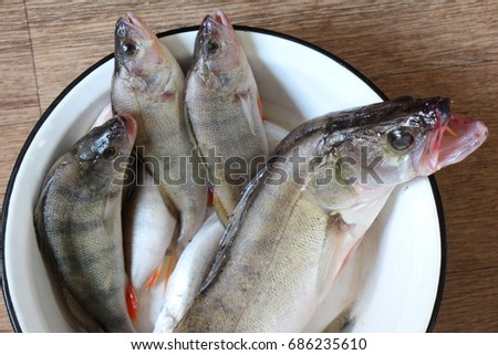 Fresh fishes #686235610