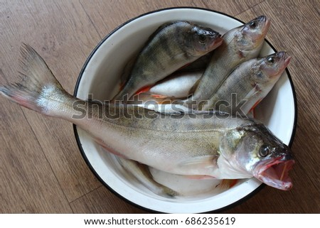 Fresh fishes #686235619