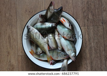 Fresh fishes #686237791