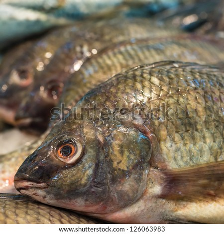 Fresh fishes in roll ready for sale