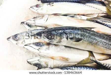 fresh fishes in super market