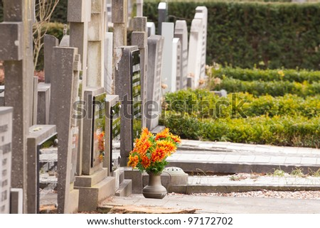 Fresh flowers on a grave