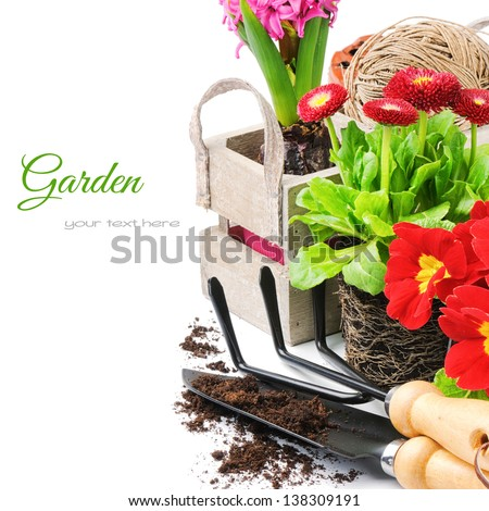 Fresh flowers with garden tools isolated over white