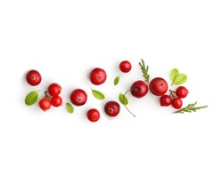 Fresh forest berry cranberry isolated on white background.