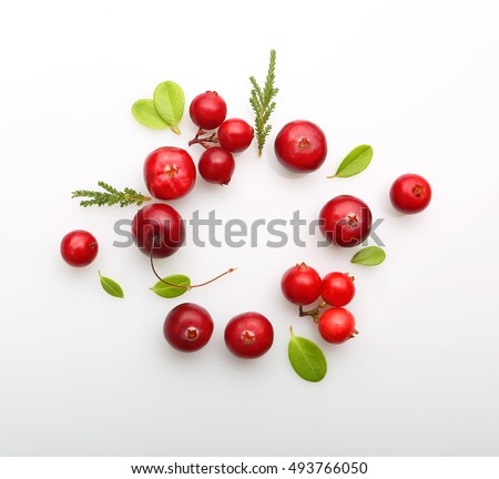 Shutterstock Fresh forest berry cranberry isolated on white background.