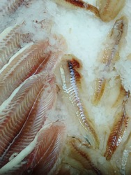Fresh frozen fish for sale in a supermarket