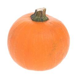 Fresh fruit. Natural pumpkin. on white background