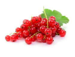 Fresh fruits, red currants with leafs, isolated