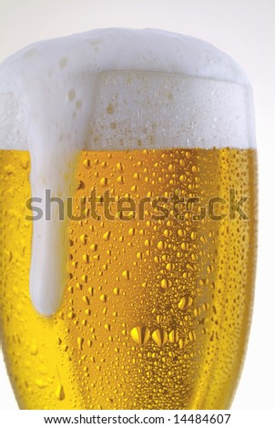 Fresh glass of pils beer with froth and condensed water pearls