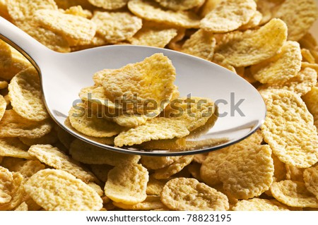 Fresh golden corn flakes on a spoon close up