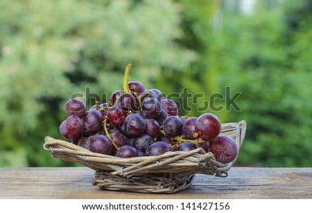 Fresh grapes in wicker basket on wooden table in the garden