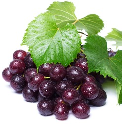 fresh grapes with leaves on white