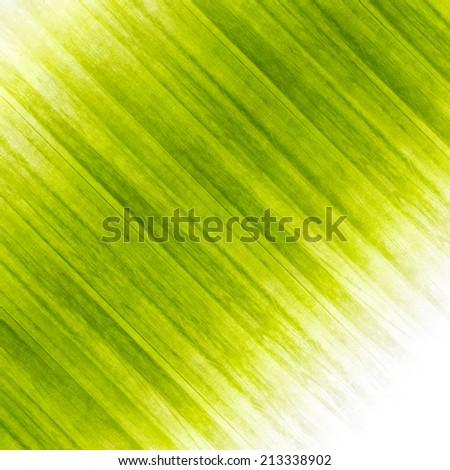 Fresh grass abstract design. Ecology background illustration.