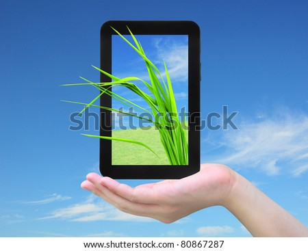 fresh grass and tablet PC in women hand on sky