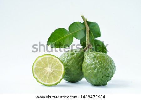 Fresh green bergamot Thai herb for spa and hair treatment , hair loss problem, hairfall control, Nutrition organics product