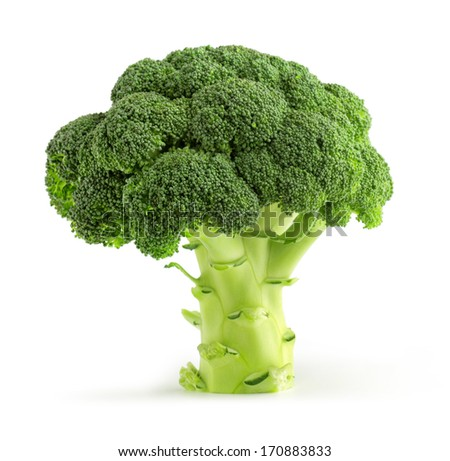 fresh green broccoli isolated on white background #170883833