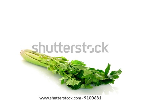 Fresh green celery on reflective surface, studio shot, white background.