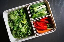 Fresh green chopped coriander or cilantro, scallions (green onions, spring onions) and red chili peppers contained in food grade plastic storage box on grey paint wood planks background. (top view)