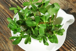 Fresh Green  common purslane (Portulaca oleracea) leaves in a white vessel.
