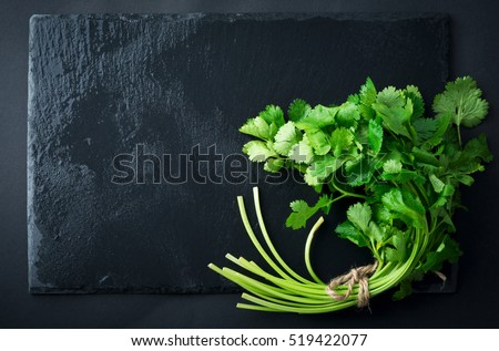 Fresh green coriander, coriander leaves on a black slate background. Selective focus. #519422077