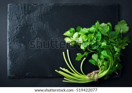 Fresh green coriander, coriander leaves on a black slate background. Selective focus. #519422077