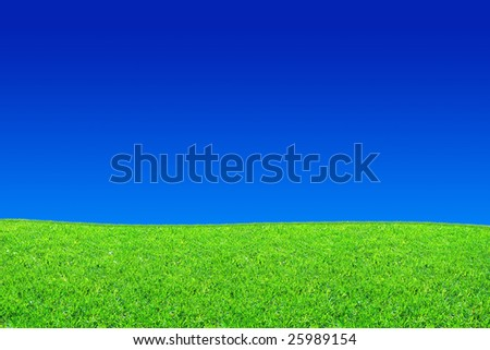 Fresh green grass and blue sky background