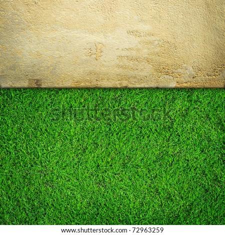 Fresh green grass on sand stone background
