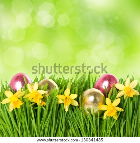 fresh green grass with narcissus flowers and easter eggs over nature blurred background