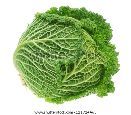 Fresh green head of cabbage. On a white background.