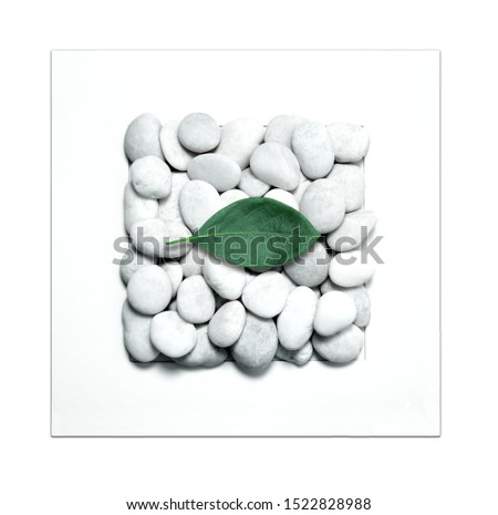 Fresh green leaf and white stones  on white background