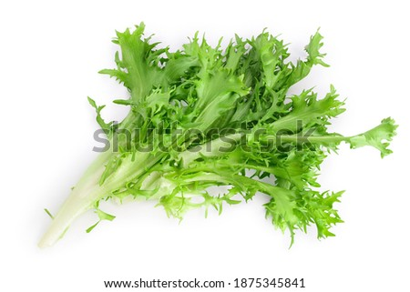 Fresh green leaves of endive frisee chicory salad isolated on white background with clipping path and full depth of field. Top view. Flat lay Foto stock ©