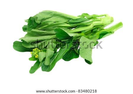 Fresh green mustard on white background (Brassica juncea)