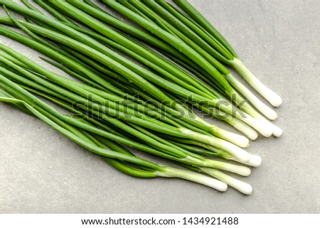 Fresh green onion bunch, clean vegetables, freshly harvested garden produce. Farm fresh onions with spring chives.