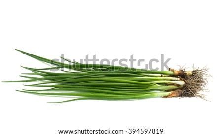 Fresh green onions on white background