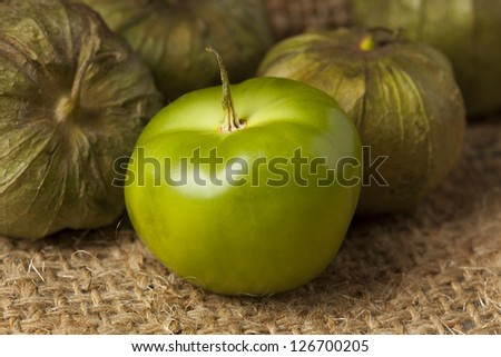Fresh Green Organic Tomatillo with a husk