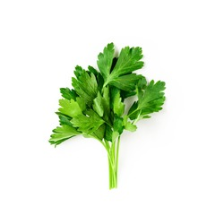 Fresh green parsley bunch isolated on white background with clipping path. Top view, flat lay. Floral design element. Healthy eating and dieting concept