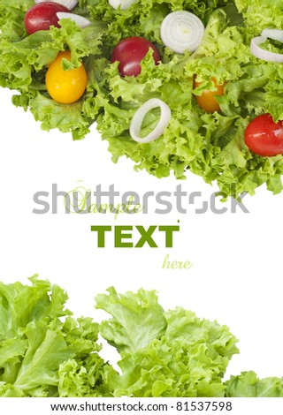 Fresh green salad and tomatoes with sample text on white background