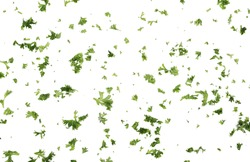 Fresh green sliced French parsley leaves isolated on white background, top view