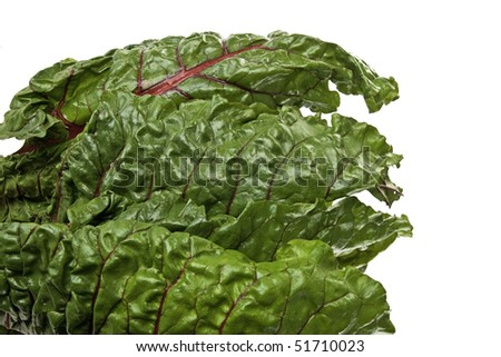 Fresh green Swiss Chard leaves with bright red veins