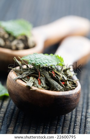 Fresh green tea leaves on wooden spoon