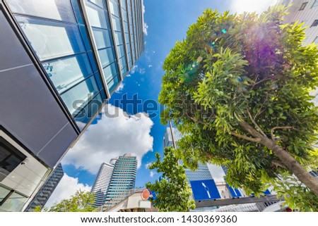 Fresh green trees and urban buildings #1430369360