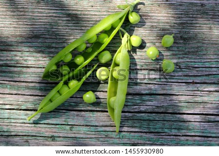 Fresh green young  open pea pods on wooden table. Ripe fresh young green peas (pisum sativum)  on old rustic wooden background on a sunny day. Photo stock ©