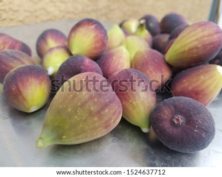 fresh group of freshly picked figs