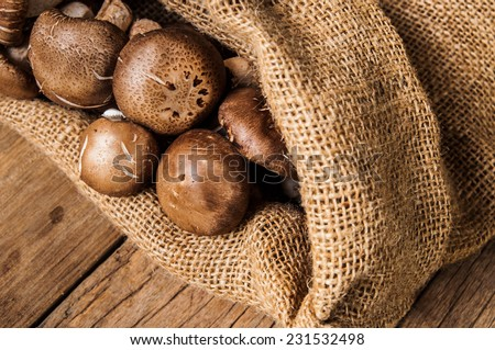 Fresh Harvest Mushroom in Vintage Burlap Bag on Wood Table Background, Concept and Idea of Food Art Cook Country Farm Rustic Still life Style.