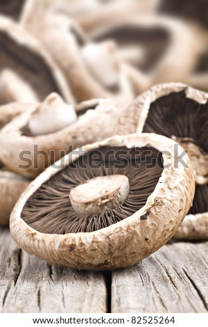 Fresh healthy brown mushrooms with very shallow depth of field