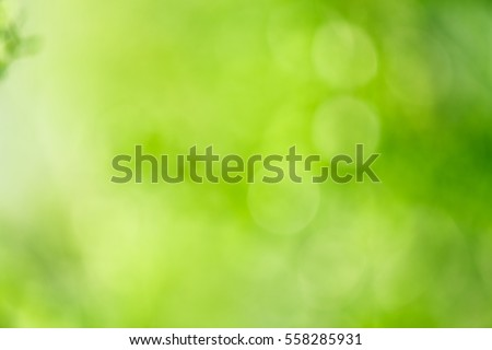 Fresh healthy green bio background with abstract blurred foliage.